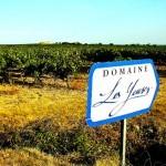 Die Weine der Domaine 'Les Yeuses'
