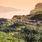 Olivini – Weingenuss vom Gardasee