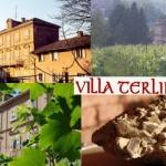 Die Weine der 'Villa Terlina'