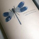 Sauvignon 'Blaue Libelle' 2010