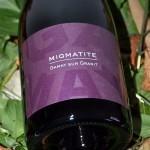 Migmatite Gamay sur Granit 2011