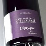 Dernier Cri 2012 Bourgueil