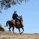 Von Cowbys für Cowboys