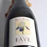 Faye Bianco 2013