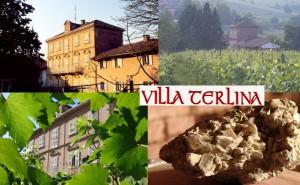 Azienda Agricola Villa Terlina - Agliano Terme (Asti), Piemont