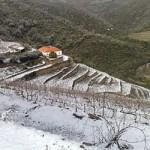 Winter am Douro