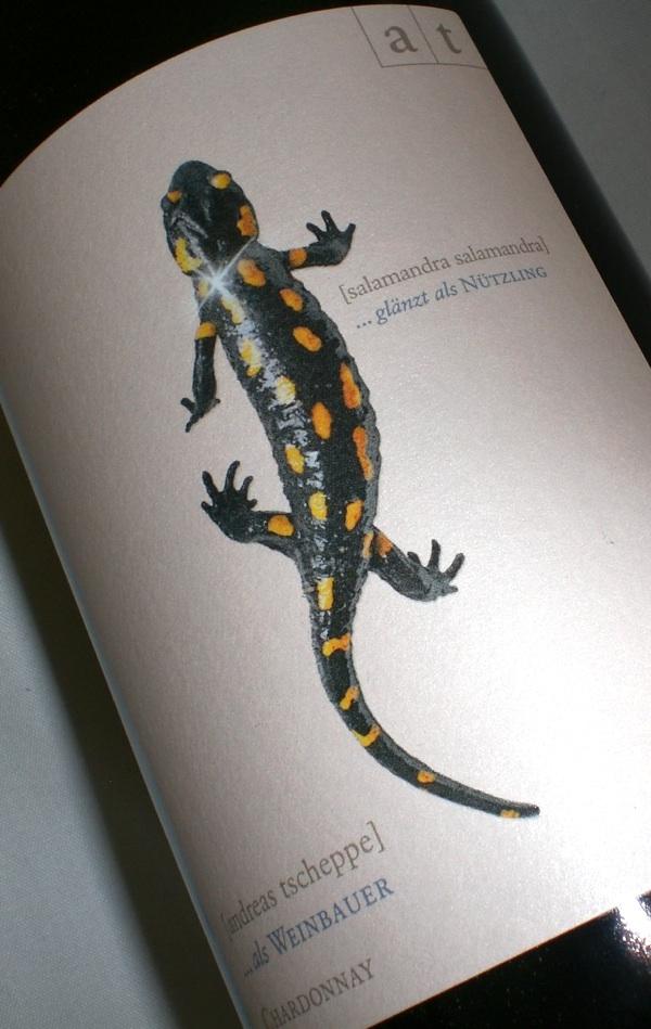 Schwarz Gelber Salamander