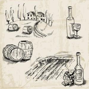 Wine, Winemaking and Vineyard - hand drawn illustration