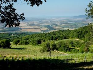 Blick über Valdonica