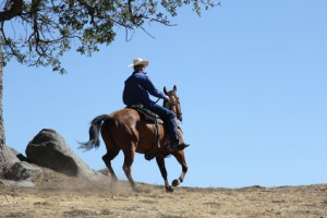 A cowboy riding his horse on a mountain into a big blue sky.