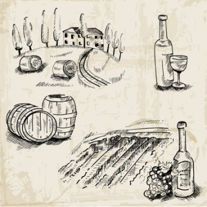 Wine, Winemaking and Vineyard - hand drawn illustration